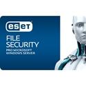 Obrázek ESET File Security pro Microsoft Windows Server; obnovení licence; počet licencí 1; platnost 1 rok